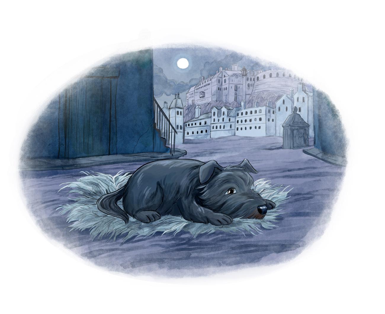 Bobby the dog sad in the night